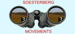Sberg-movements